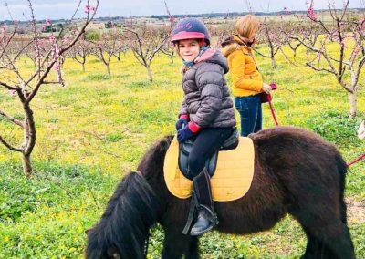 Balade Baby-poney dans les environs du Centre équestre Écurie de la Serre - Saint Thibéry