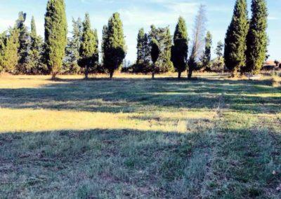 Le spring garden du centre équestre Écurie de la Serre